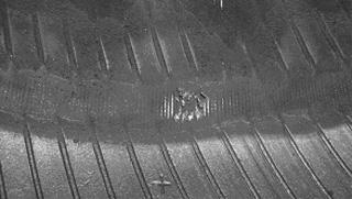 участок перетирания и разрыв нитей корда каркаса