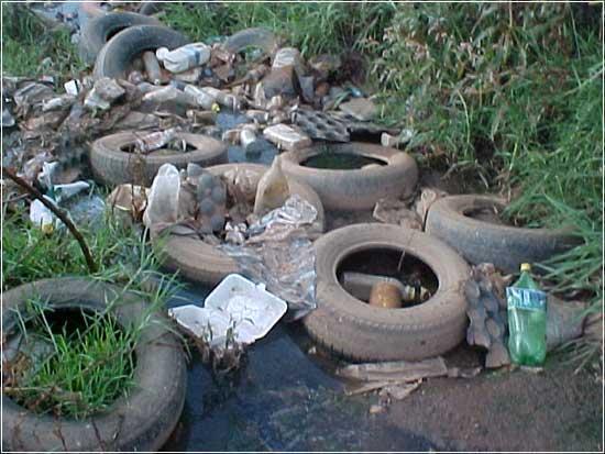Южноафриканское правительство не заинтересовано в безопасности шин