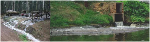 Завод Firestone в Либерии обвиняют в загрязнении реки