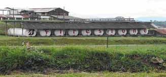 Bridgestone Firestone обсуждает договор о каучуковых плантациях  в Либерии